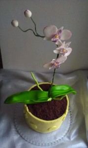 торт орхидея 2